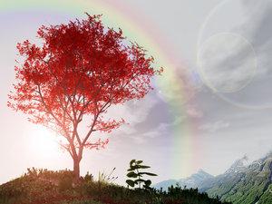rainbow_tree_by_tigaciduk